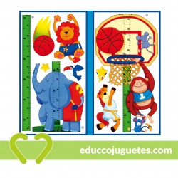 Medidor de Altura Baloncesto Small Foot